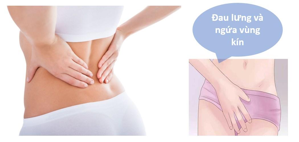 Đau lưng và ngứa vùng kín là bệnh gì? Nguyên nhân và cách chữa tích cực